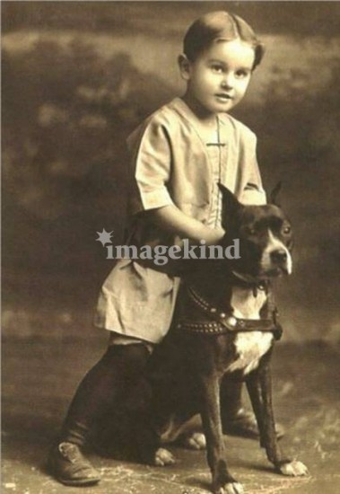 For Over 100 Years, Pitbulls Were Our Babysitters ...