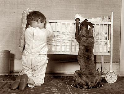 boy-and-pit-bull-praying-pitbull-extreme