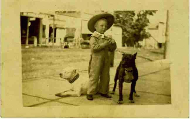 kid-pitbull-dogs