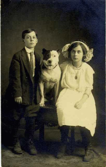 pit-bull-and-kids