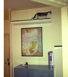 Diy Floor To Ceiling Sisal Cat Pole 187 Adoptapet Com Blog