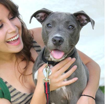 happy-girl-pit-bull-puppy