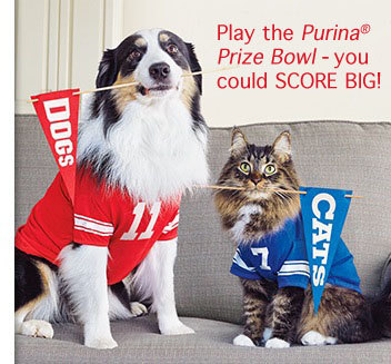 Purina-Prize-Bowl