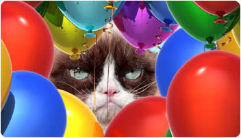 Grumpy-Cat-Party-Animal