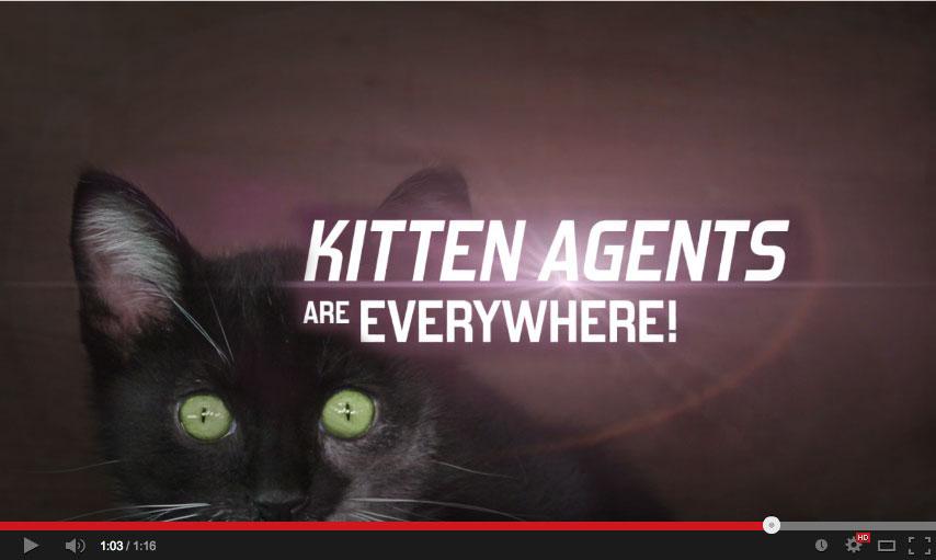 Kitten-agents4
