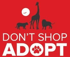 adopt-exotic