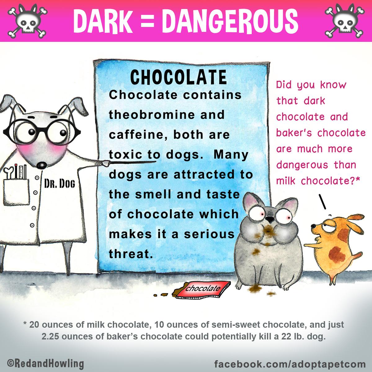 FB-AAP-chocolate