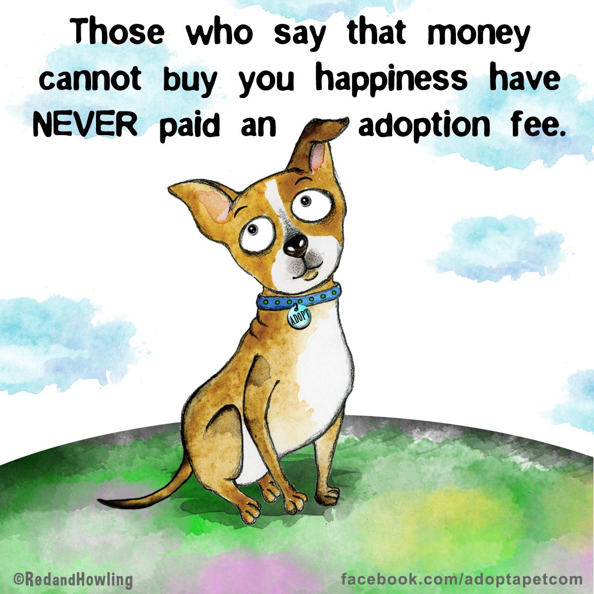 AdoptionAAP
