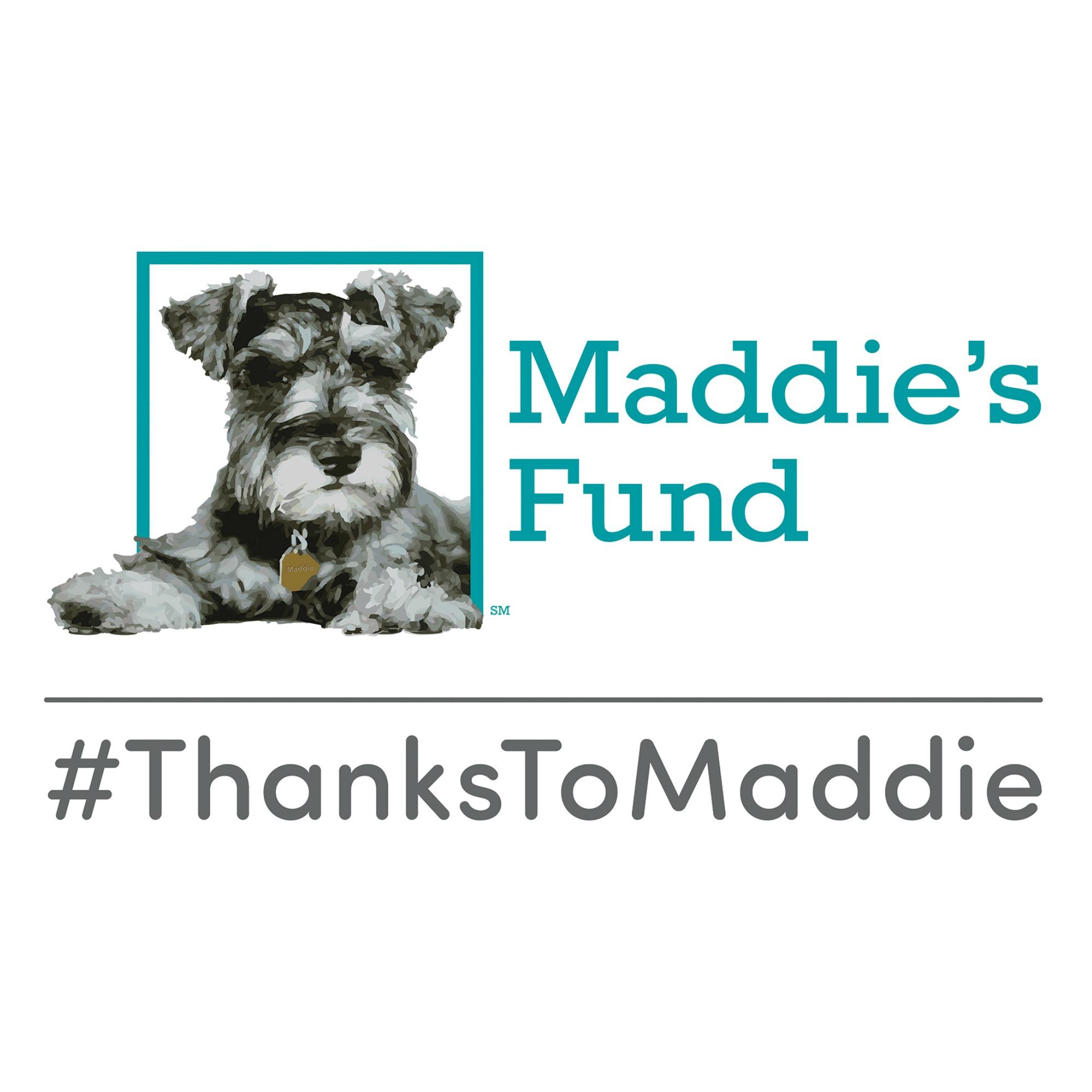 Maddie square