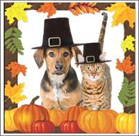thanksgiving-animals-leaf-frame