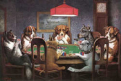 dogs-poker-iphone-app