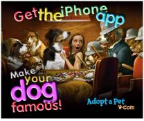 iphone-app-adopt-a-pet