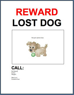 Perfect Found Pet Poster Template.doc  Lost Dog Poster Template