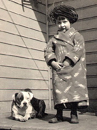 Adopt A Pet Com Blog For Over 100 Years Pitbulls Were Our