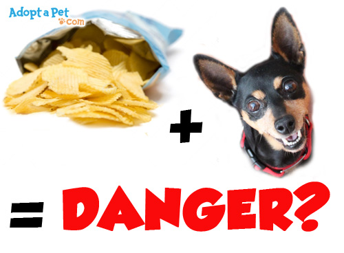 chips-bag-danger