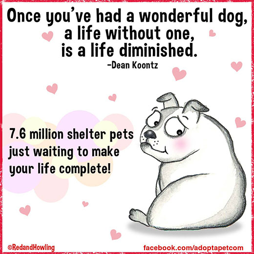 cartoon-wonderful-life-dog