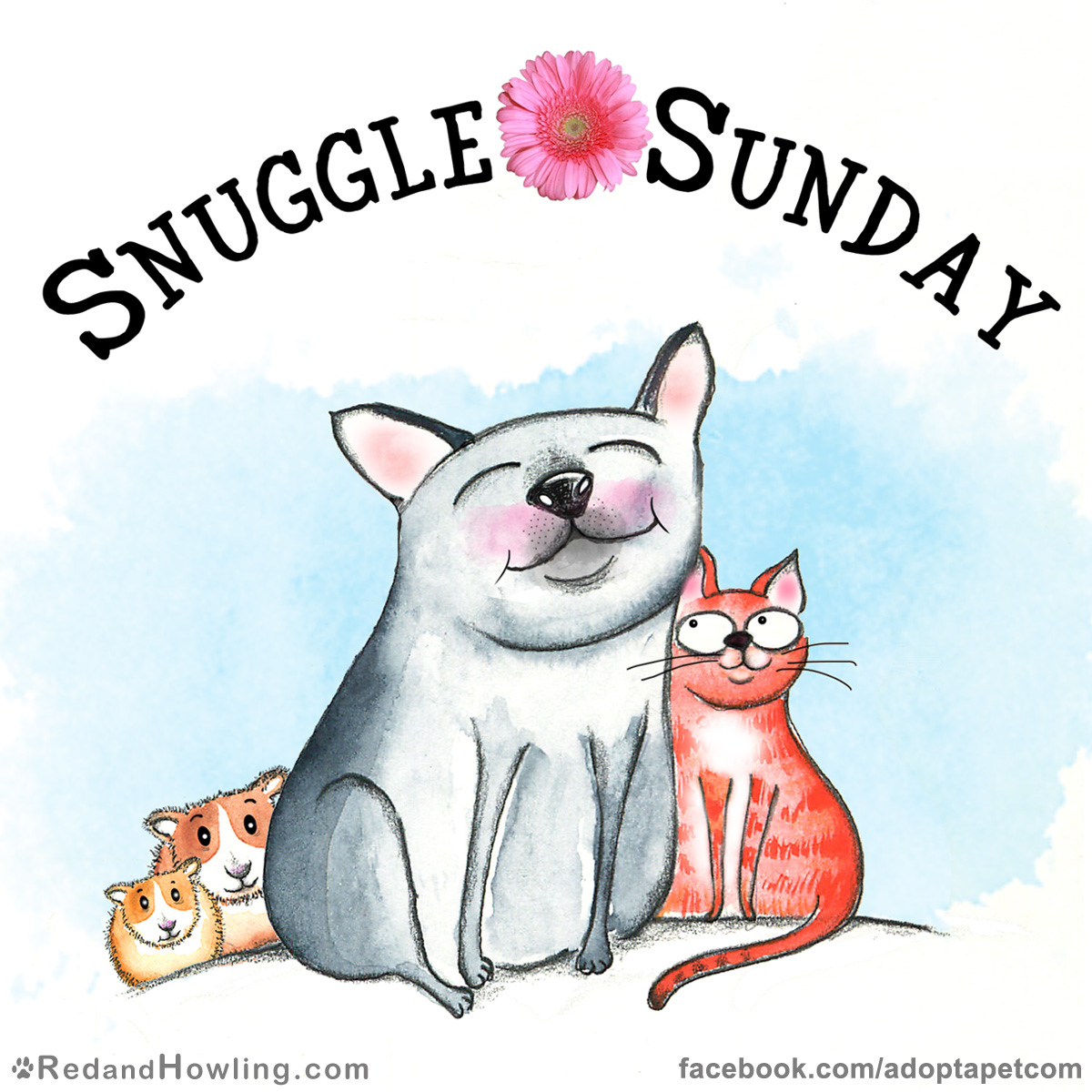 SnuggleSunday