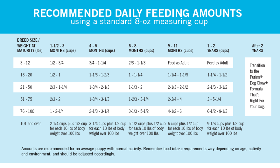 puppy feeding guidelines