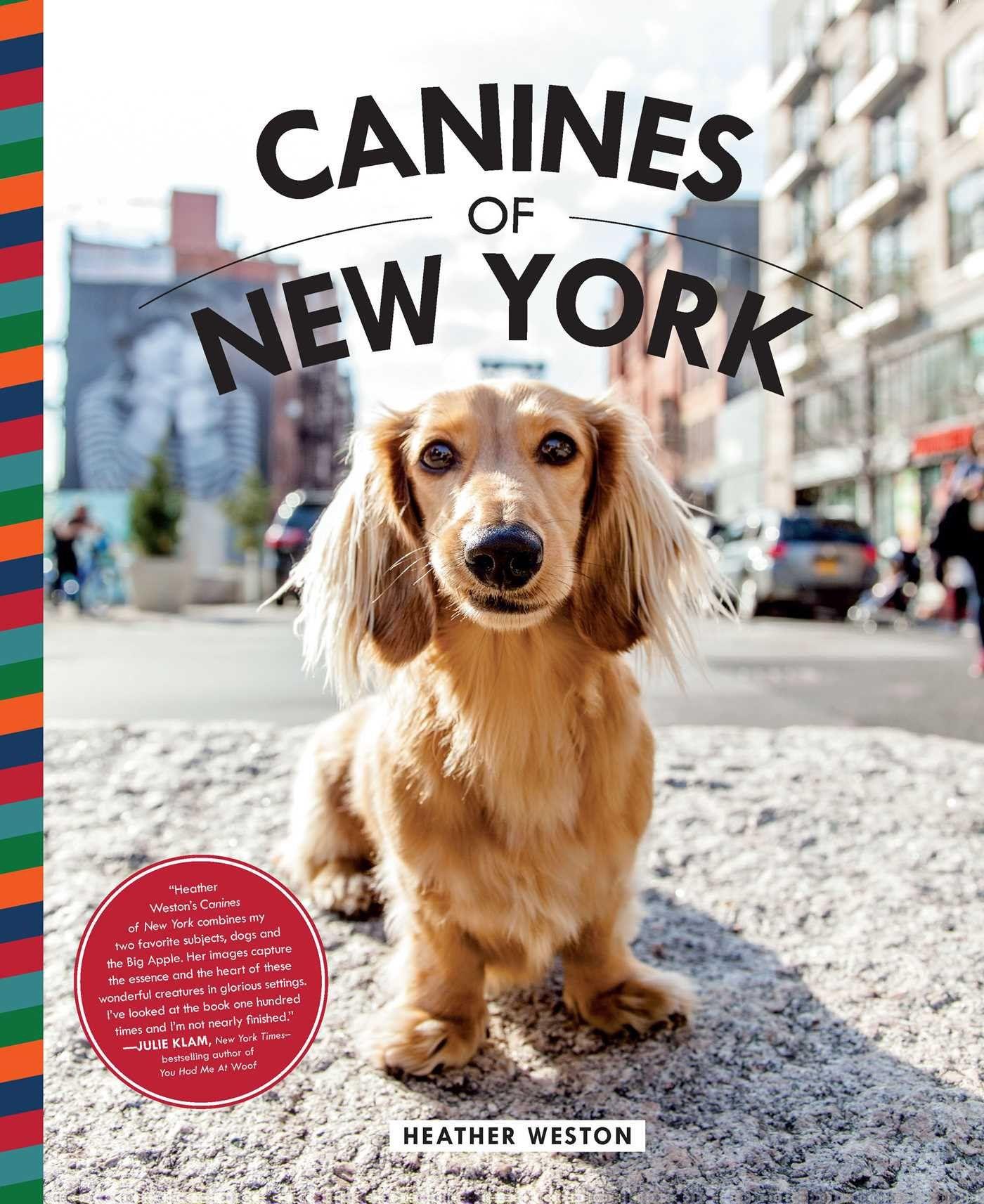 Canines of NY