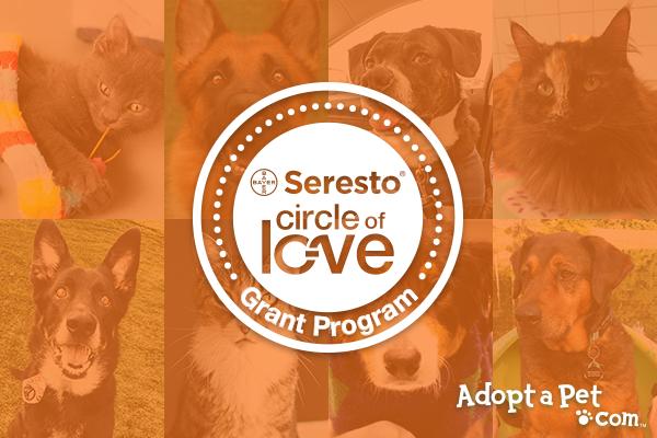 Circle of Love logo