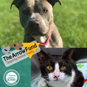 The Arrow Fund, Seresto®