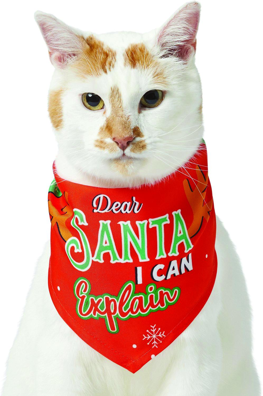 Frisco Dear Santa I Can Explain Dog & Cat Bandana