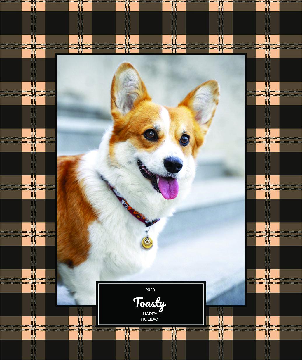 Frisco Personalized Plaid Sherpa Fleece Blanket, 50_ x 60__Dog