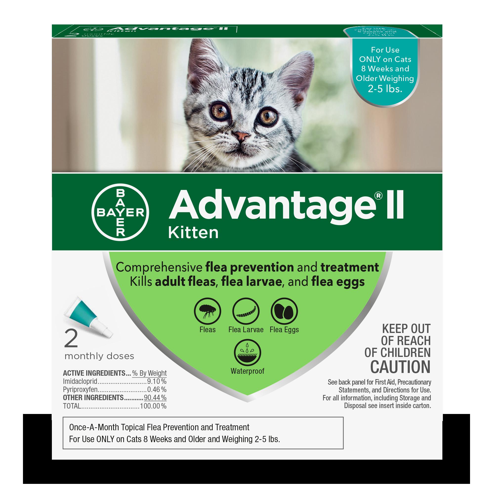 Kitten_2pk_ACTUAL_Front
