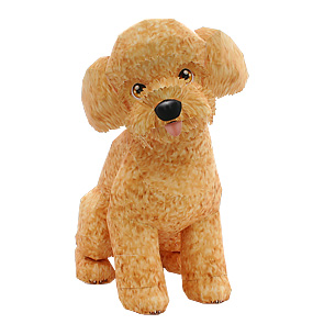 a paper poodle is hypoallergenic