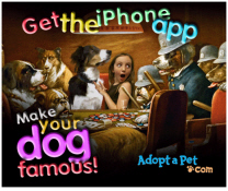 iphone-app-adopt-a-pet