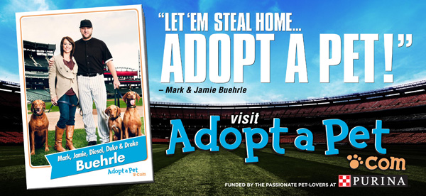 AdoptAPet_billboards