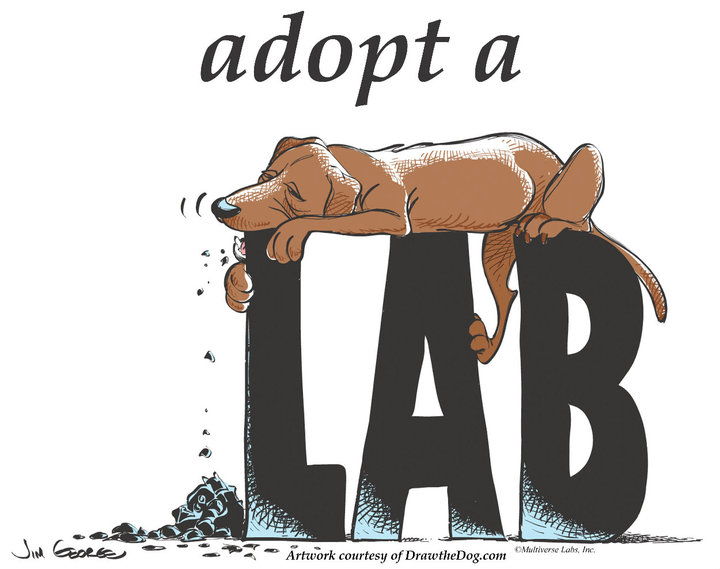 cartoon-lab
