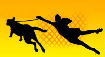 1118396_dog-pulling
