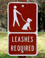 751632_leashes_required_sign
