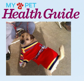my-pet-health-benny