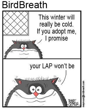 pet-adoption-cartoon-2
