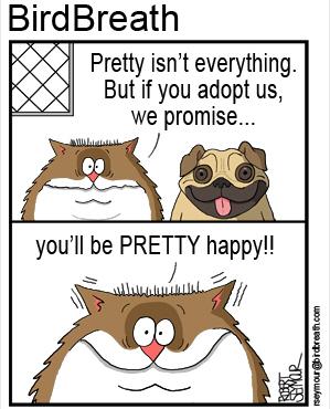 pet-adoption-cartoon-3