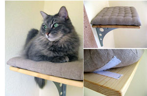diy cat climbing shelves adopt a pet com blog rh adoptapet com Cat Wall Shelves Ideas DIY Cat Wall Climbing Systems